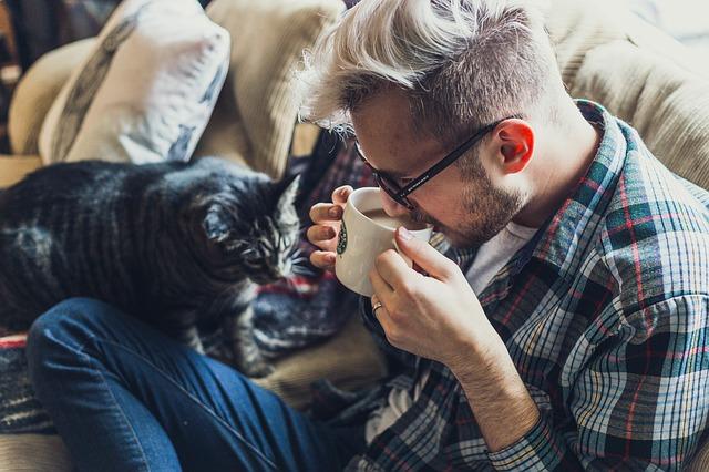 muž, káva, kočka, gauč